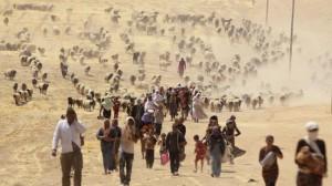 Yazidis flee